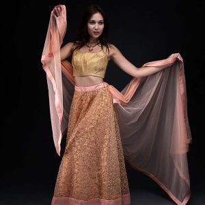 Peach Net Embroidery Skirt with Gold Brocade Blouse with Net Dupatta