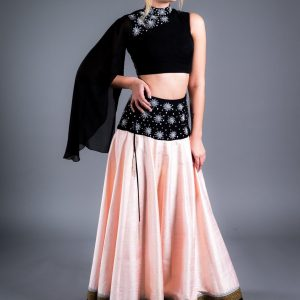 Pink Raw Silk Skirt With Embroidery on waist belt and Georgette Blouse with Embroidery and Long Sleeve